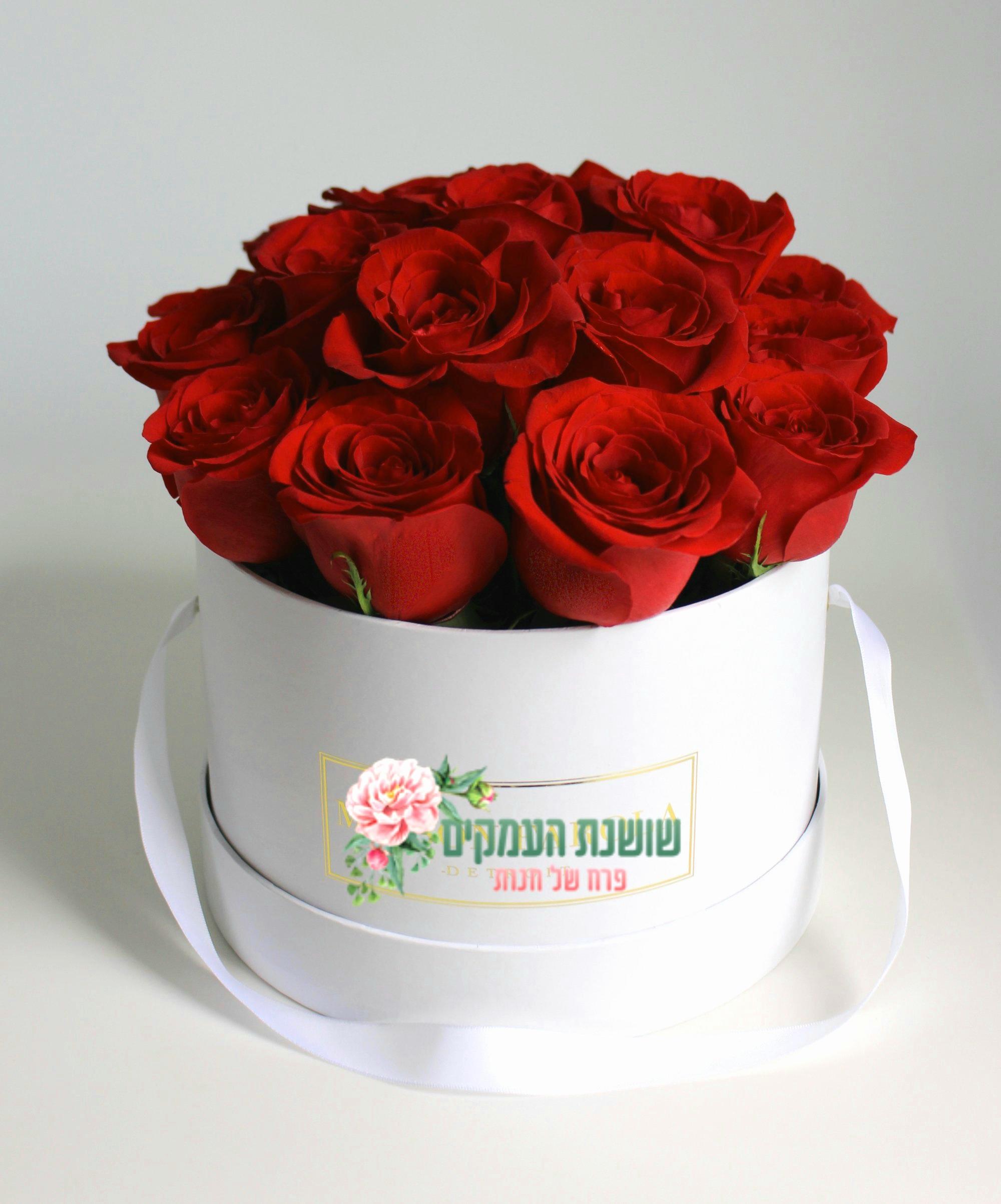 קופסאת פרחים-דגם ליזה